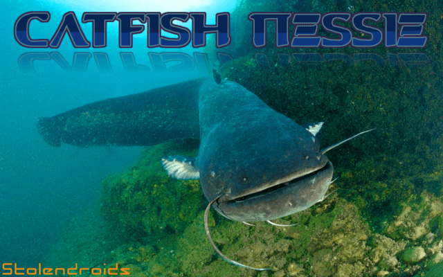 sdfiles-051-featured