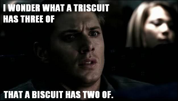 i-wonder-what-a-triscuit-has-three-of-that-a-biscuit-has-two-of