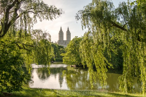 {088} Central Park