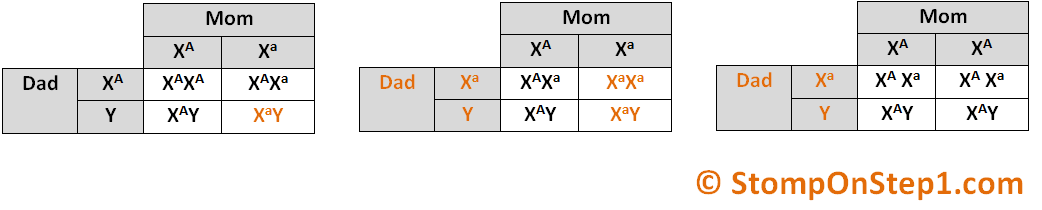 genetic inheritance autosomal dominant xlinked