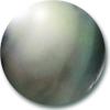 ブラックパール(黒真珠)