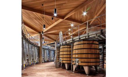 Per rendere questo vivibile, un percorso circolare porta dalla consegna dell'uva al piano terra fino al magazzino in 2 piani interrati e ai grandi serbatoi per la fermentazione.