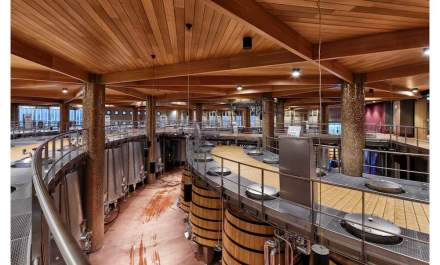 To make this tangible, a guided tour of the complex starting with the grapes delivered in the ground floor, over storage areas in the lower level and to the fermentation tanks.