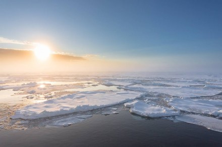The Arctic Ocean today: Drift ice and pack ice seen from aboard the German research vessel Polarstern, on the way to the North Pole. Photo: Stefan Hendricks / AWI