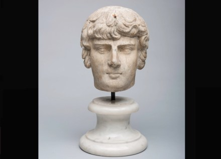 Portrait of Antinous, Roman, A.D. 130-138, Marble, h. 9 5/16 in. (23.7 cm); w. 7 5/16 in. (18.6 cm); d. 8 1/16 in. (20.5 cm). San Antonio Museum of Art, bequest of Gilbert M. Denman, Jr. Photography by Peggy Tenison