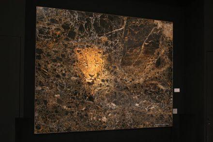 "<a href=""http://www.progettoartepoli.com/""target=""_blank"">Progetto Arte Poli</a>."