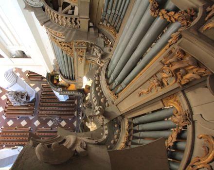 Erfahrungswissen befähigt auch zum Perspektivenwechsel, wie hier an einer Orgel demonstriert. Foto: Reiner Janke