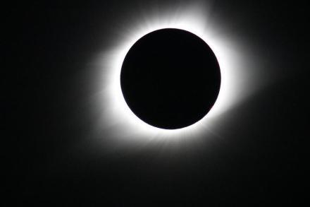 Die Sonnenkorona, wie sie sich während der totalen Finsternis 2017 zeigte. Das Foto wurde am 21. August von einem Nasa-Gulfstream-III-Flugzeug aus etwa 12.000 km Höhe über der Küste des US-Bundesstaates Oregon aufgenommen. Foto: NASA's Goddard Space Flight Center/Gopalswamy