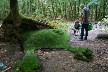 "Internationaler Waldkunstpfad 2018, Emanuelle Camacci & Fulvio D'Orazio: ""Green Benches""."