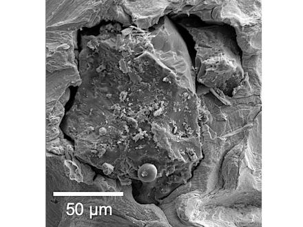 A tiny grain of lunar soil brought back by Apollo 17, magnified under a scanning electron microscope. Source: Jennika Greer, Field Museum