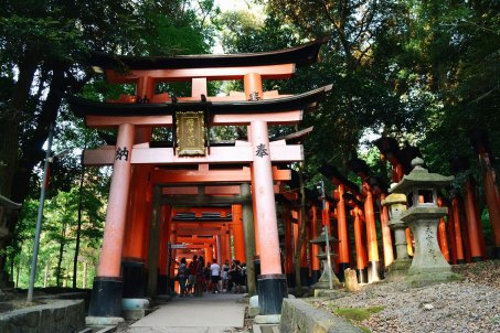 Kyoto City Travel Guide