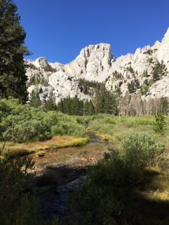 On the way down to Whitney Portal (1)