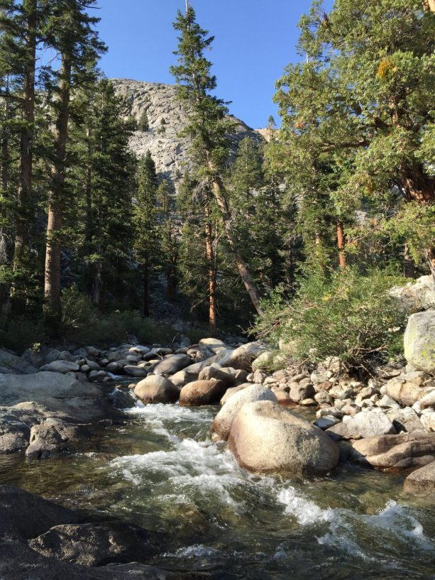 Piute Creek (2)