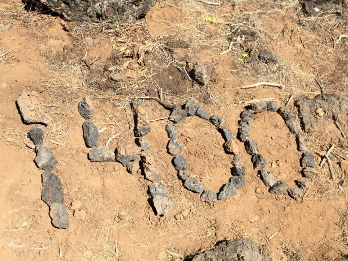 1400 mile marker of the PCT