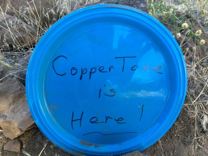 Blue plate announcing that Coppertone is here
