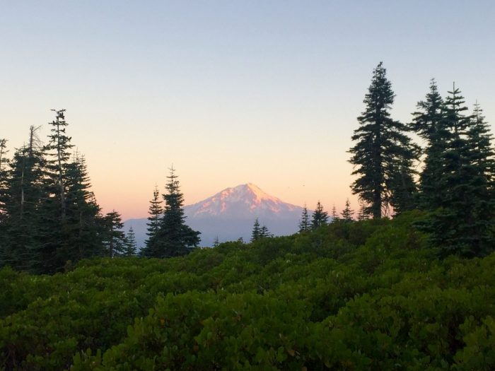 Mount Shasta at sunrise