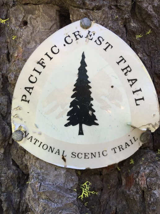 An old PCT marker faded by the sun to black and white