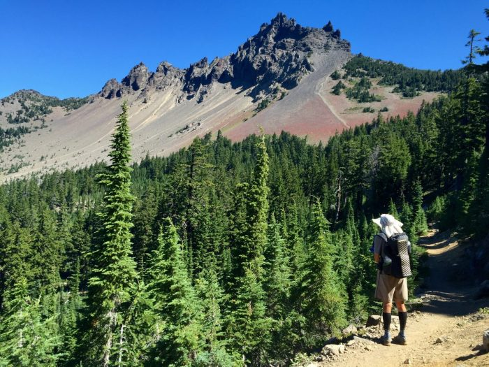 Beardoh admiring the view of Three Fingered Jack