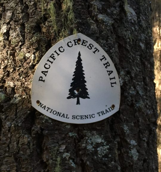 Old black and white PCT trail marker