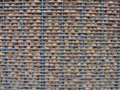 Mur noyaux peche (6)