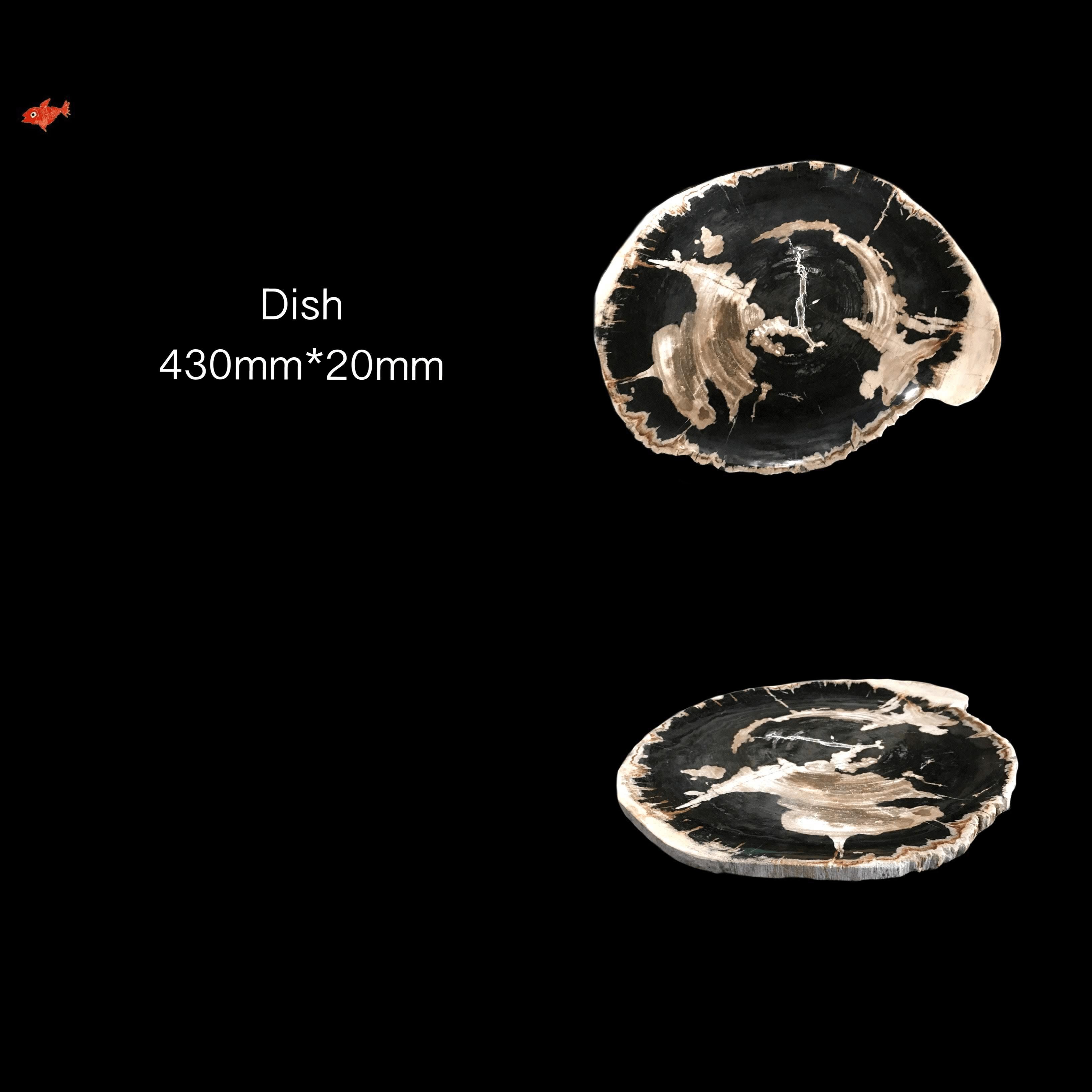 Mineral Fossil Bowl Vide Poche