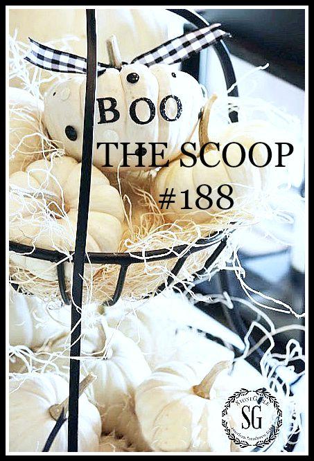 THE SCOOP #188