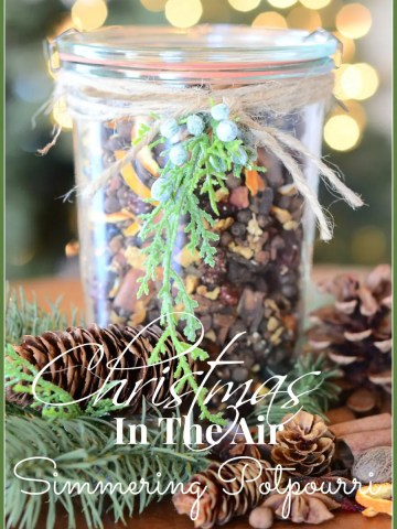 HOLIDAY SIMMERING POTPOURRI