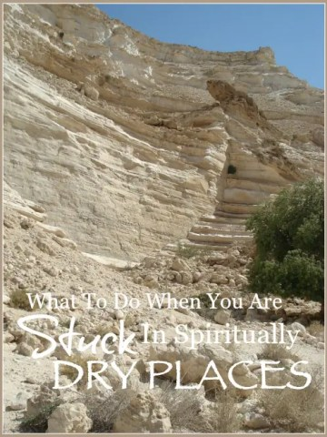 WHAT TO DO WHEN YOU ARE SPIRITUALLY STUCK IN A DRY PLACE