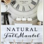 NEUTRAL FALL MANTEL
