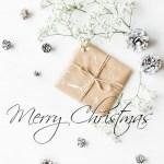 MERRY CHRISTMAS FRIENDS!