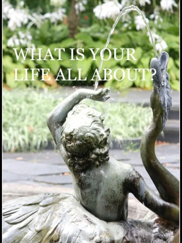WHAT IS YOUR LIFE ALL ABOUT?
