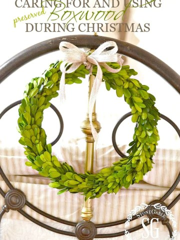 CARING FOR AND USING BOXWOOD DURING CHRISTMAS