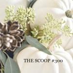 THE SCOOP #300