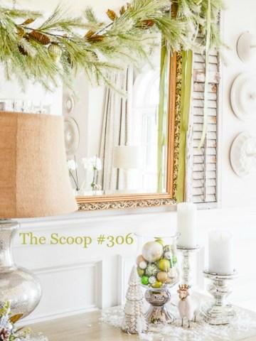 THE SCOOP #306