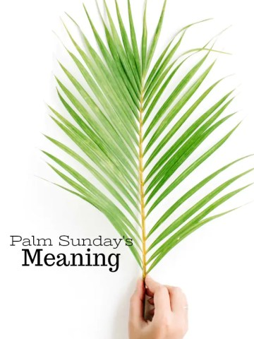 PALM SUNDAY'S MEANING