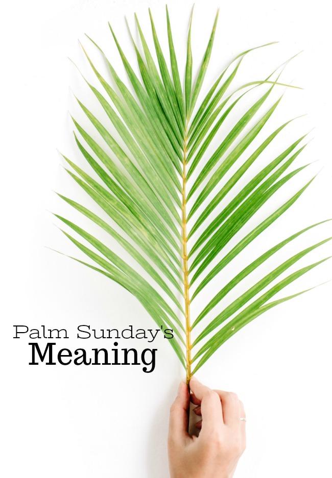 Palm Sundays Meaning Stonegable