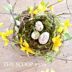 THE SCOOP #319