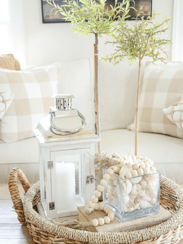 THE MAGIC OF TRANSITIONAL VIGNETTES