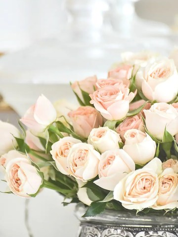 CARING FOR CUT FLOWERS TO LAST LONGER