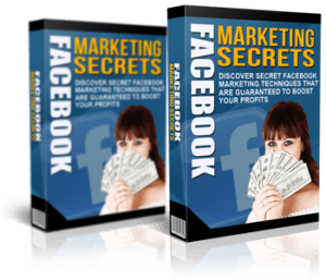 The Niche Marketing Kit 2017 Review