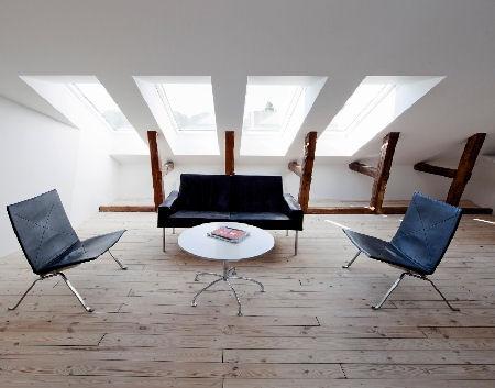attic design skylight
