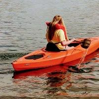 Kayaking Tour with Professional Guide/Shuttle