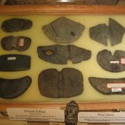 Prehistoric American Indian Stone Artifacts 010