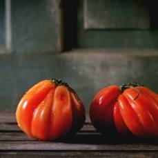 Albenga Oxheart Heirloom Tomatoes