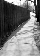 Coming home for family: Sidewalk in Chestnut Hill, MA