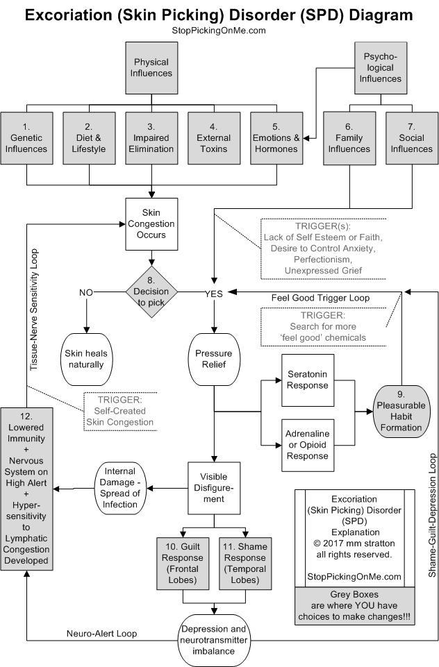 Excoriation Skin Picking Disorder Flow Chart