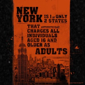 ny-adult-charges-infographic