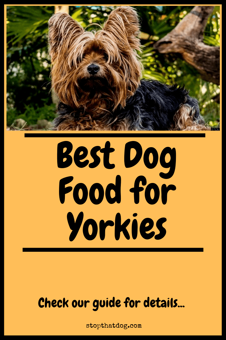 Looking to buy the best dog food for Yorkies? If so, our guide reveals many of the best options available and highlights the top 5 based on buyer reviews.