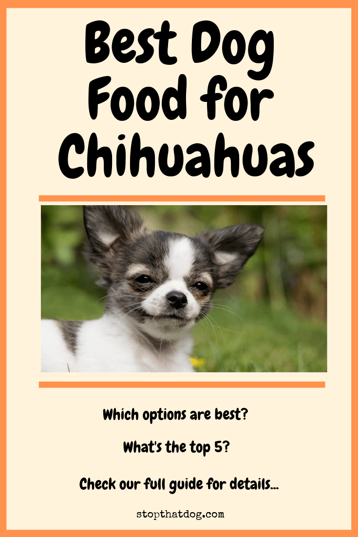 Want to buy the best dog food for a Chihuahua? If so, our guide reveals many of the best options and highlights the top 5 based on dog owner reviews.