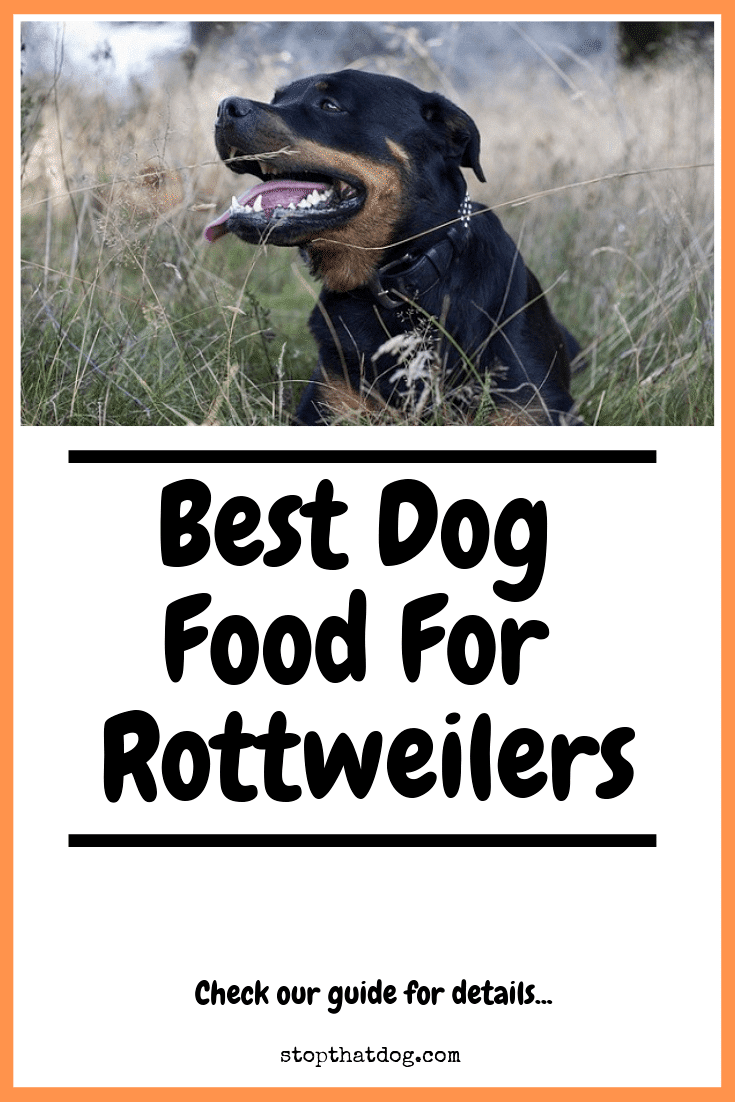 Looking to buy the best dog food for a Rottweiler? If so, our guide highlights the top options on the market based on buyer reviews.